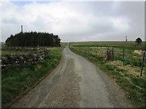 NO2203 : Road from Holl Reservoir, Lomond Hills by Bill Kasman
