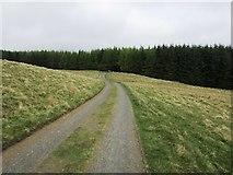 NO2104 : Road from Holl Reservoir, Lomond Hills by Bill Kasman