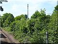 TQ5288 : The Romford to Upminster Line by Marathon