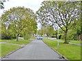 SO9295 : Delhurst Avenue View by Gordon Griffiths