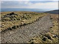 NS9500 : Track near summit of Gana Hill by wrobison