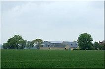 TF6404 : Home Farm, Crimplesham by JThomas