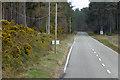 NH9249 : A939 Achnatone Wood by David Dixon