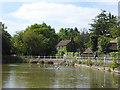 TQ5993 : Mill Pond on Shenfield Common by Marathon