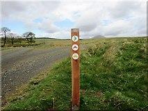 NO2204 : Post on track to Harperleas Reservoir, Lomond Hills by Bill Kasman