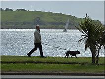 NS2059 : Largs promenade by Thomas Nugent