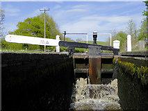 SO8690 : In Marsh Lock near Swindon, Staffordshire by Roger  Kidd