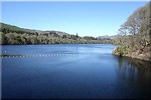 NN9357 : Loch Faskally by Peter Jeffery