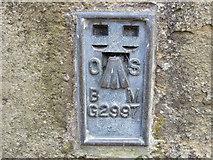 NY9650 : Ordnance Survey Flush Bracket G2997 by Peter Wood