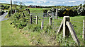 J5967 : Concrete fence posts, Ballybryan near Greyabbey (May 2017) by Albert Bridge