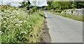 J6267 : The Ballyatwood Road near Ballywalter (May 2017) by Albert Bridge