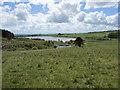 NO2203 : Holl Reservoir, Lomond Hills by Bill Kasman