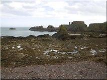 NT6779 : Intertidal zone, Dunbar by Richard Webb
