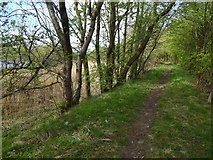 NS3977 : Path beside the River Leven by Lairich Rig