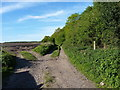 SJ9613 : Track and footpaths just north of the former colliery by Richard Law