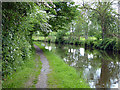 SJ3135 : The Shropshire Way and the Llangollen Canal by John Lucas