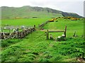 NO1807 : Path to Bunnet Stane, Lomond Hills by Bill Kasman