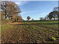 SP2574 : Fields and hedges east of Meer End by Robin Stott