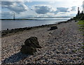 TA0325 : Humber shoreline at Hessle by Mat Fascione