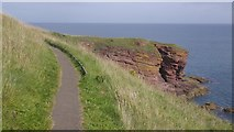 NO6641 : Angus Coast Path by Richard Webb