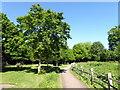 TQ5901 : Path in Hampden Park by PAUL FARMER