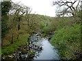 SH6943 : Afon Goedol at Pont Cymerau by Christine Johnstone