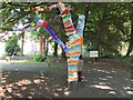 NT3272 : Tree with a cardigan by Jim Barton