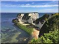 SZ0582 : Old Harry Rocks, Handfast Point by John Allan