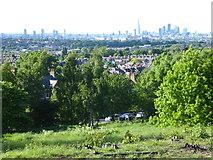 TQ3473 : The view from Dawson's Hill by Marathon