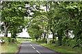 J2885 : The Knowehead Road near Templepatrick (May 2017) by Albert Bridge