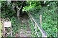 NO1801 : Path to Bishop Hill by Bill Kasman