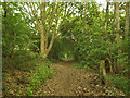 SE2936 : Lower footpath, Sugarwell Hill by Stephen Craven