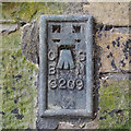 H5026 : Flush Bracket, Clones by Rossographer