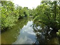 SO5567 : River Teme at Little Hereford by Philip Halling