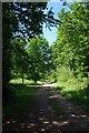 TL4707 : Track Through Latton Park by Glyn Baker