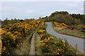NH5026 : Path beside the Lewiston/Grotaig Minor Road by Chris Heaton