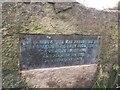 SU5692 : Plaque on the Stone by Bill Nicholls