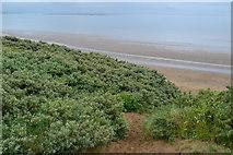 ST3050 : Path through the dunes by David Martin
