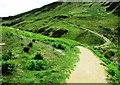 NO1806 : Old path and new path near Edge Head, Lomond Hills by Bill Kasman