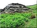 NO1805 : Memorial near Edge Head, Lomond Hills by Bill Kasman