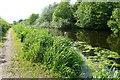 SJ5284 : The St Helens Canal by Bill Boaden