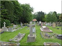 TQ1873 : St Peter, Petersham: churchyard (b) by Basher Eyre
