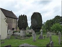 TQ1873 : St Peter, Petersham: churchyard (e) by Basher Eyre