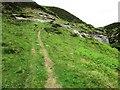 NO1805 : Path past Edge Head, Lomond Hills by Bill Kasman