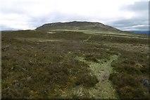 NH7301 : Curlew path by Richard Webb