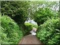 SO2828 : Ford on Broadley Lane, Nant Honddu by Christine Johnstone