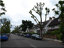 TQ2075 : Looking west north-west in East Sheen Avenue by Basher Eyre