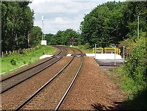 SE2334 : New level crossing west of Bramley station by Stephen Craven