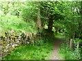 SO2827 : Walled byway heading north near Troed Rhiw Mon by Christine Johnstone