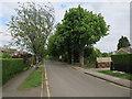 TL3440 : Green Drift, Royston by Hugh Venables